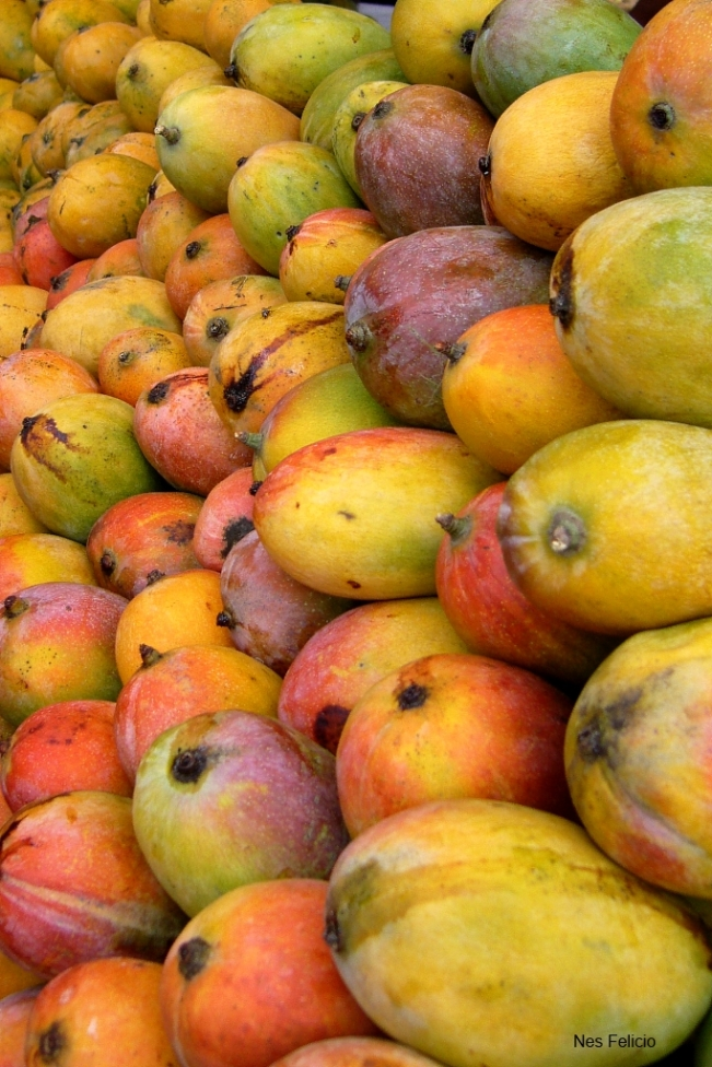 indian mangoes