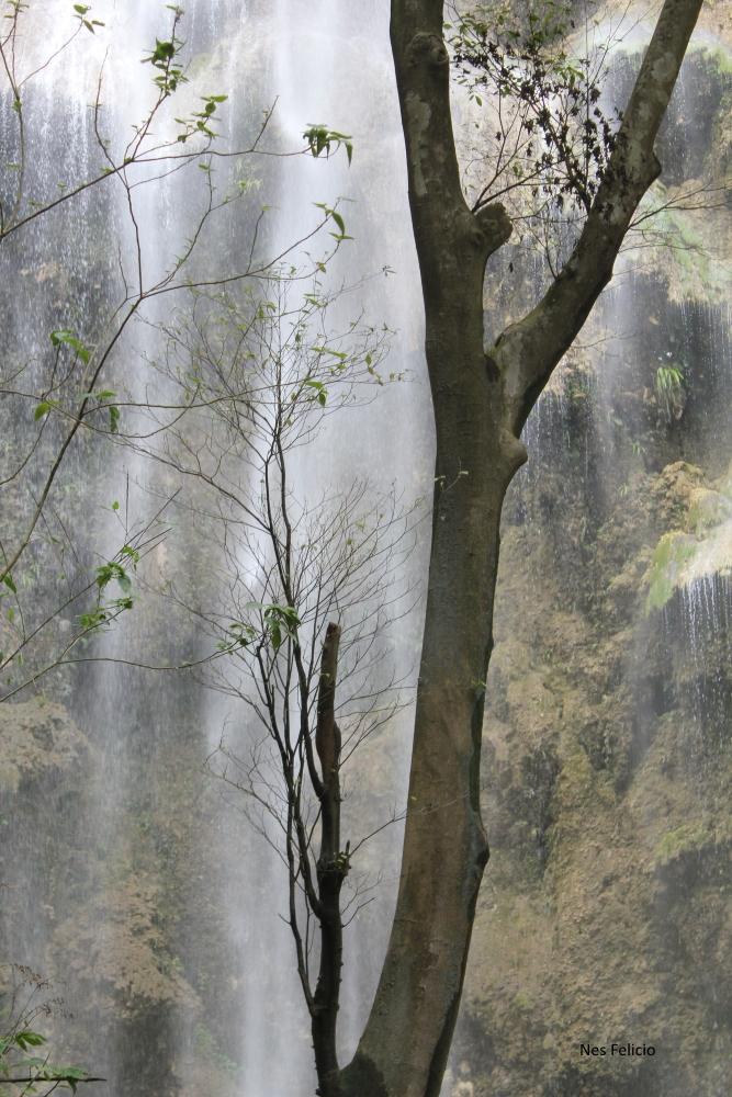 oslob-tumalog-waterfalls
