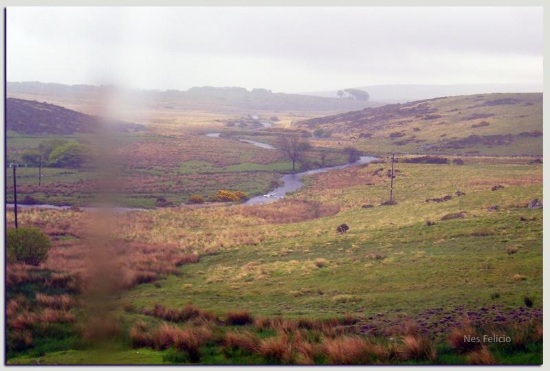 dartmoor 5w