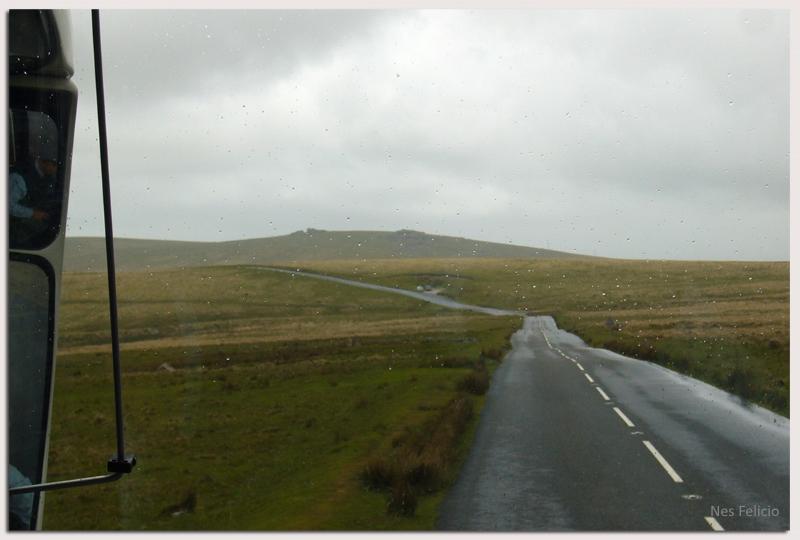 dartmoor 8w