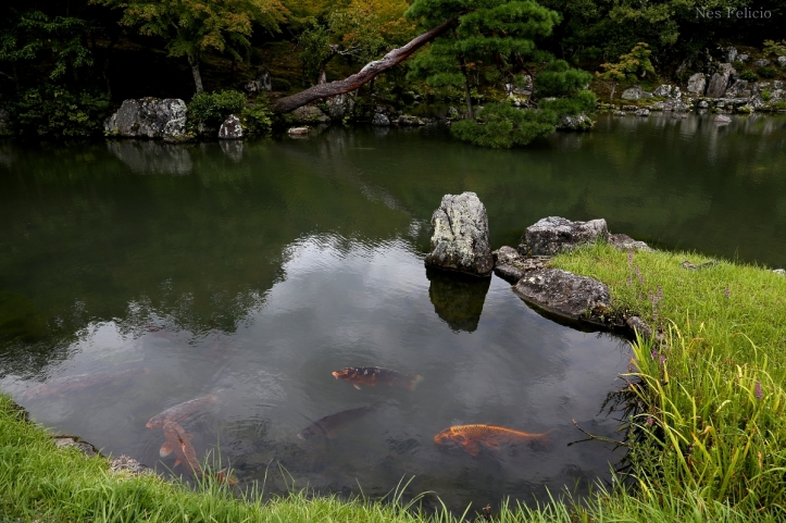 japan_0840