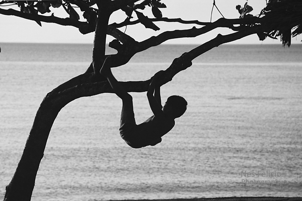 tree_and_child
