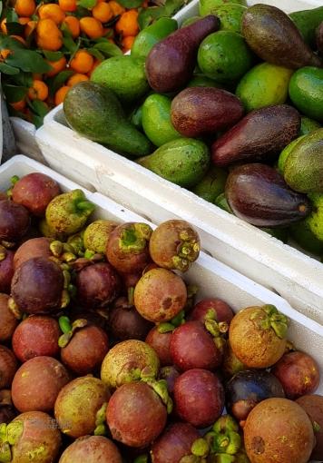 fruits_085023a