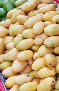 fruits_085547