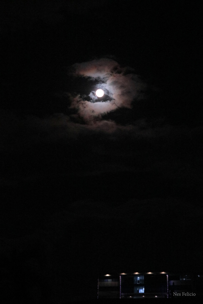 moon_5098