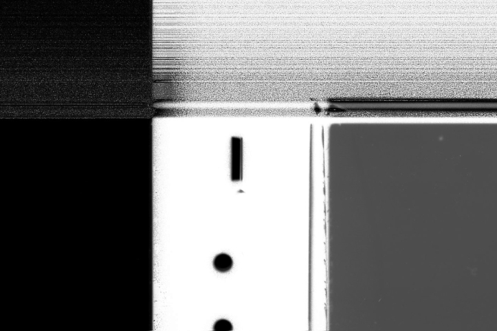 scans2019011