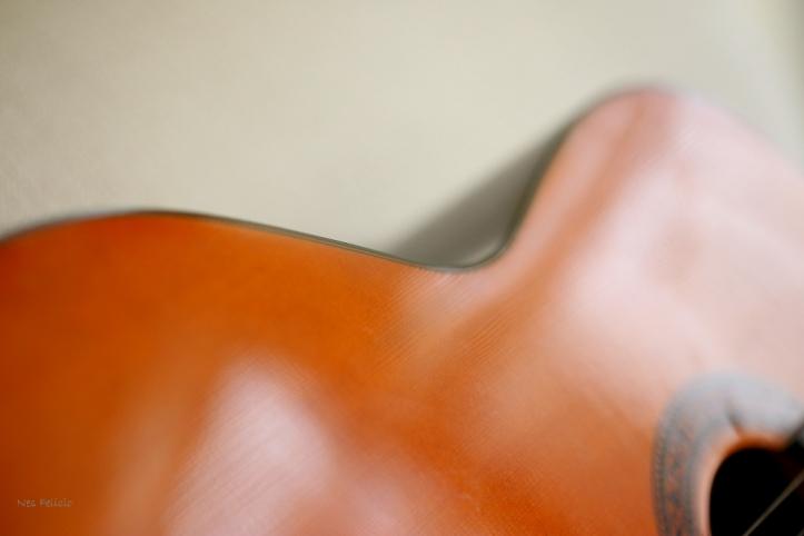 guitar_8136
