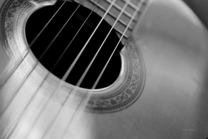 guitar_8138b