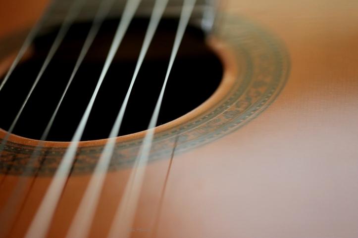 guitar_8194