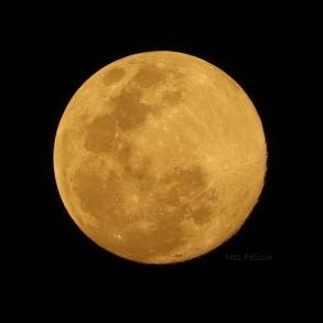 moon_1394c