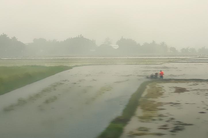 farm_141858
