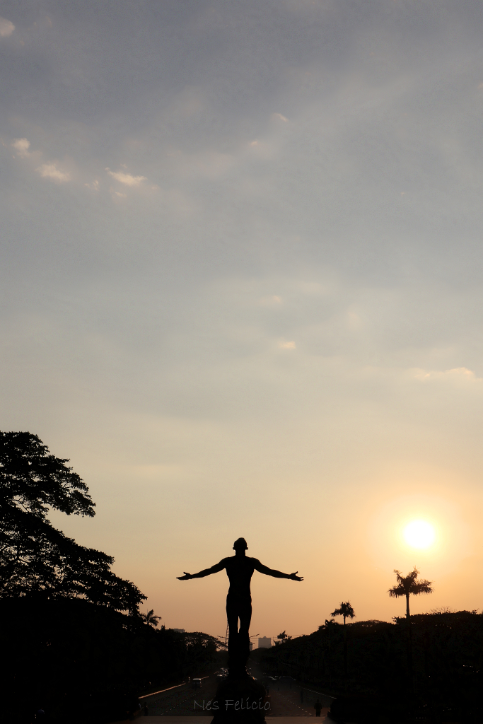oblation_7987anr