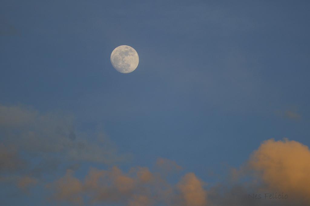 moon_2036