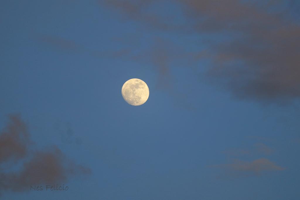 moon_2088