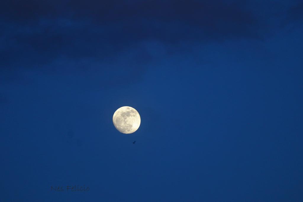 moon_2119a
