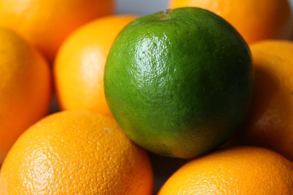 oranges_1069
