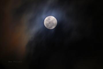 moon_2556