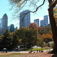 Autumn Colors in Central Park